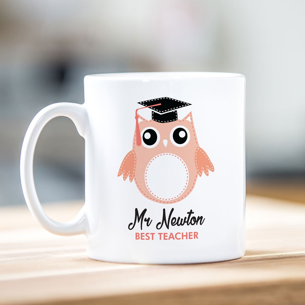 Best Teacher Peach Owl Mug