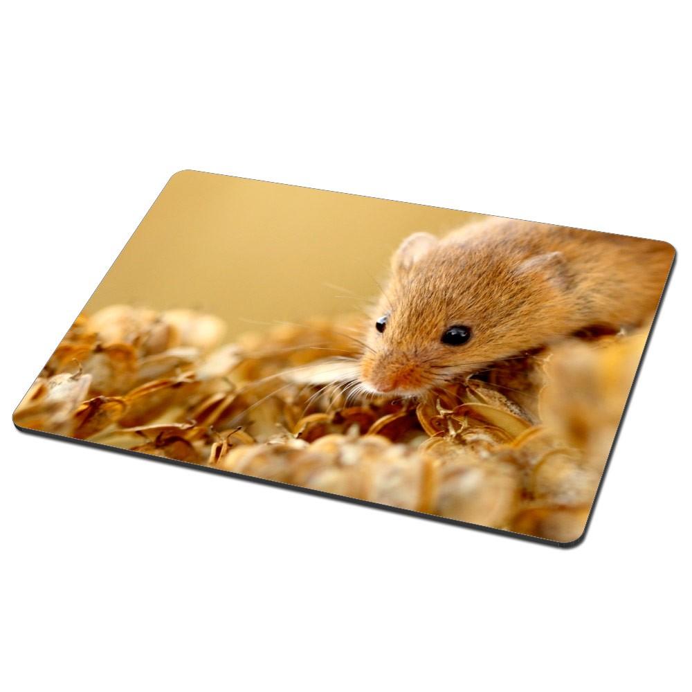 Photo Mousemat