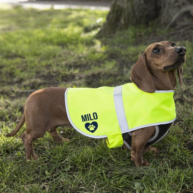 Personalised Reflective Dog Coat