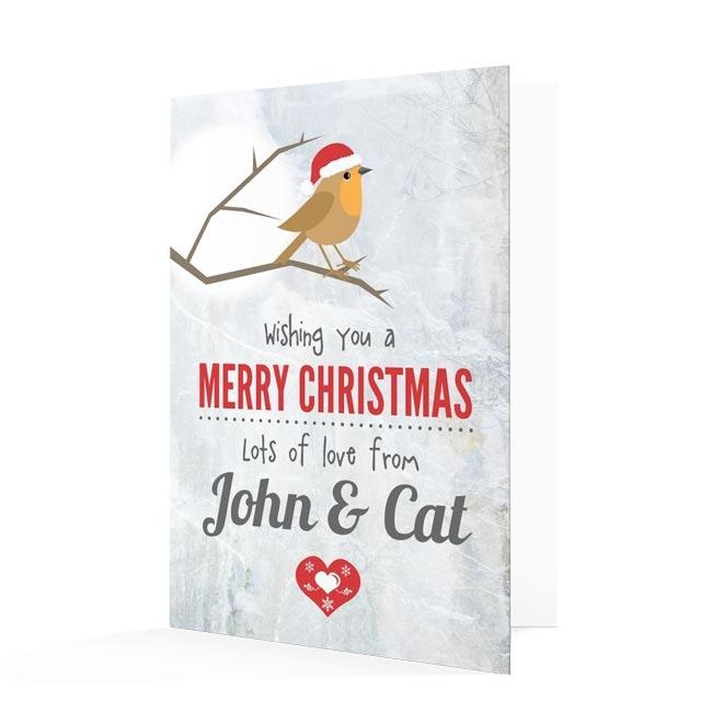 Premium Christmas Cards - Winter Robin Design