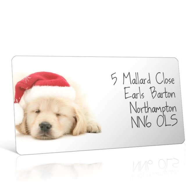 Christmas A4 Sheet Labels - Puppy in a Santa Hat
